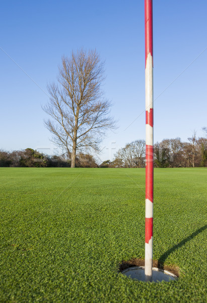 Stock photo: green in the golf course