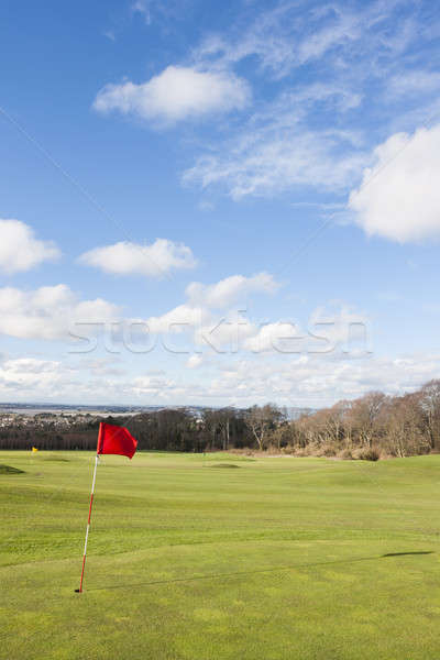Golf flag Stock photo © Aitormmfoto