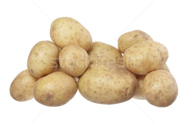 Krumpli csoport izolált fehér mezőgazdaság fehér háttér Stock fotó © Aitormmfoto
