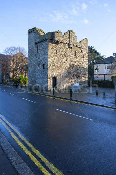 Medievale castello Irlanda viaggio pietra colore Foto d'archivio © Aitormmfoto