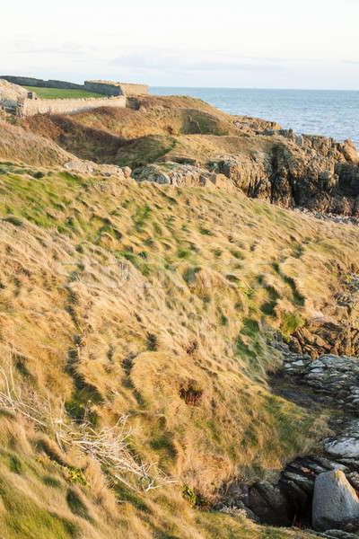 アイルランド 風景 美しい 海岸 アイルランド 空 ストックフォト © Aitormmfoto
