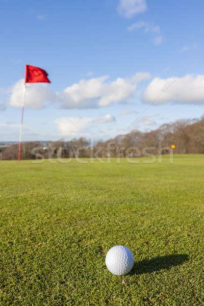 ゴルフ 緑 クローズアップ ゴルフボール 穴 草 ストックフォト © Aitormmfoto
