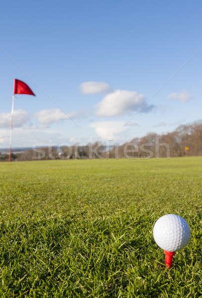 ストックフォト: ゴルフ · 緑 · クローズアップ · ゴルフボール · 穴 · 草