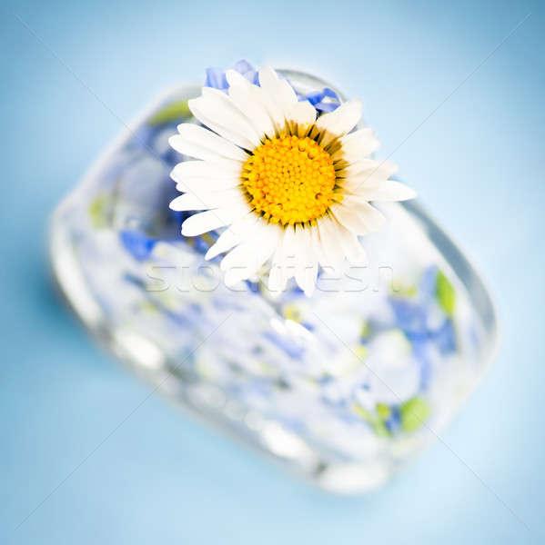 Perfume natureza flor pétalas como garrafa Foto stock © ajfilgud