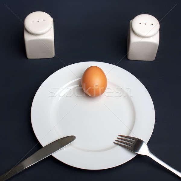 диета один яйцо пластина обеда Сток-фото © ajfilgud
