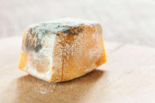 Penész étel szelet sajt öregedés vírus Stock fotó © ajfilgud