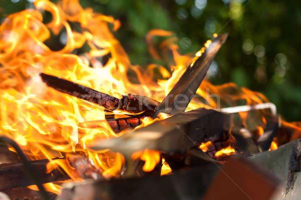 огня пламя барбекю древесины оранжевый пламени Сток-фото © ajfilgud