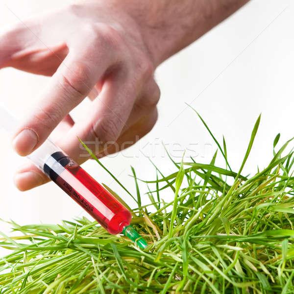 Cure the environment Stock photo © ajfilgud