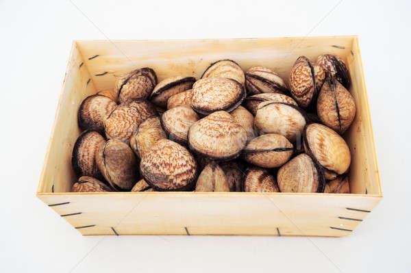 Tenger kagylók nyers étel étel Stock fotó © ajfilgud