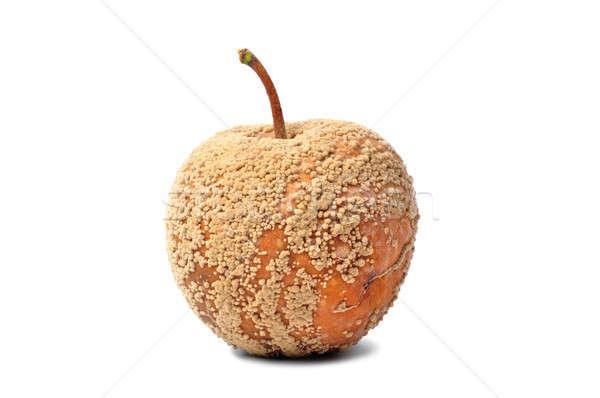 Rot appel macro geïsoleerd witte Stockfoto © ajt