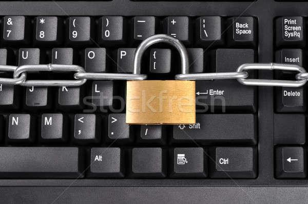 Access Denied Stock photo © ajt