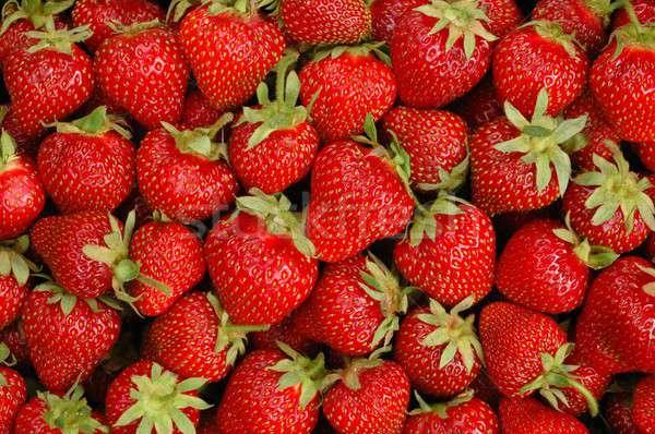 Eprek makró háttér zöld piros gyümölcsök Stock fotó © ajt