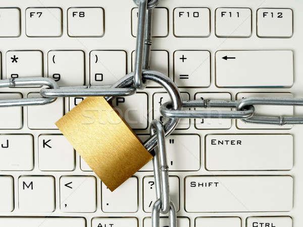 Computer security Stock photo © ajt
