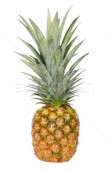 Ananász izolált gyümölcs trópusi mezőgazdaság Stock fotó © ajt