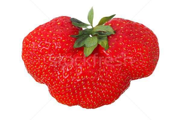 Strawbery on white Stock photo © ajt