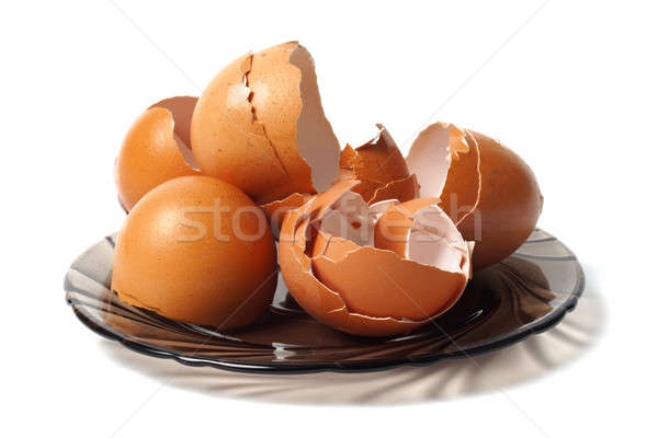 Prato ovo conchas vazio saudável cálcio Foto stock © ajt