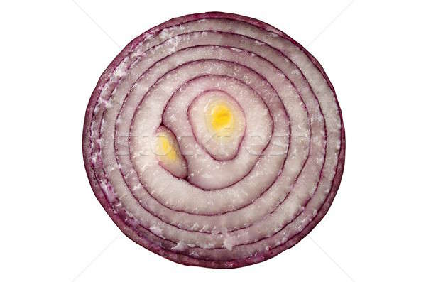 Red Onion Stock photo © ajt