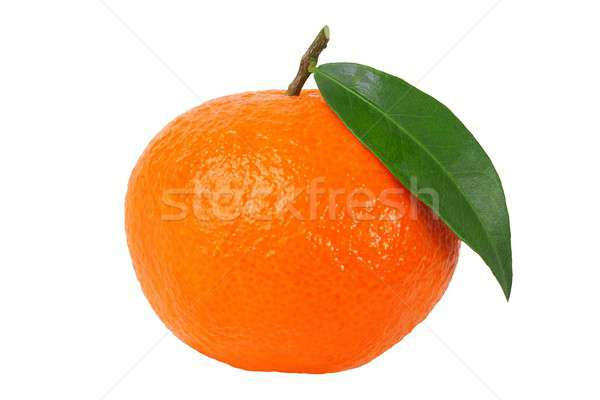 Mandarin narancs levél izolált fehér Stock fotó © ajt