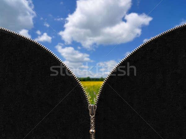 Cipzár vidéki tavasz tájkép legelő kék ég Stock fotó © ajt