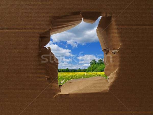 Otwór tektury wiosną krajobraz kwiaty ramki Zdjęcia stock © ajt