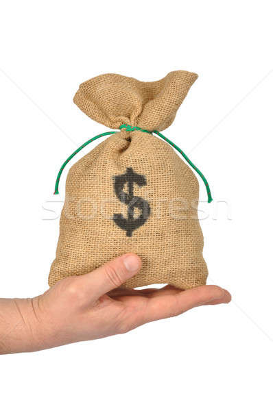 Money Bag Stock photo © ajt