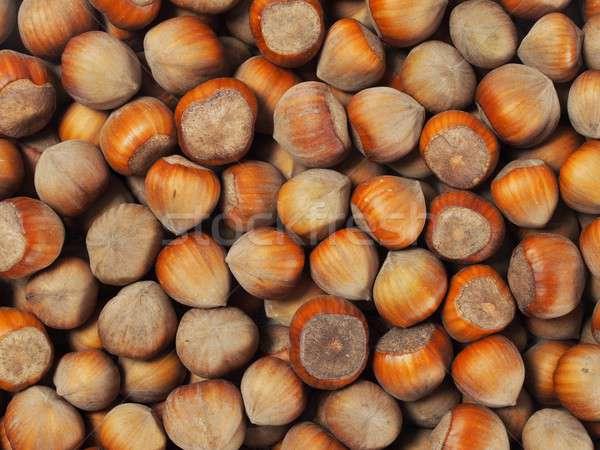 Mogyoró szett konzerv használt gyümölcsök Stock fotó © ajt