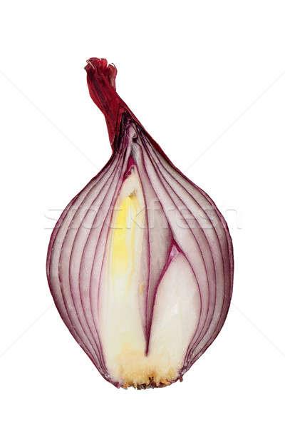 Vöröshagyma fél izolált fehér zöldségek hagyma Stock fotó © ajt