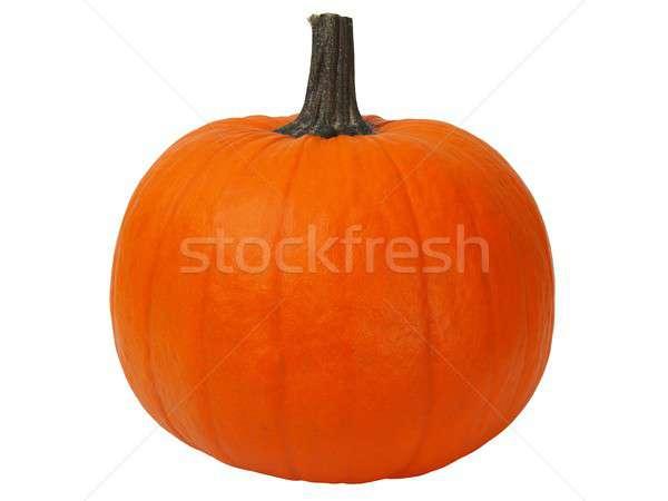 Isolated pumpkin Stock photo © ajt