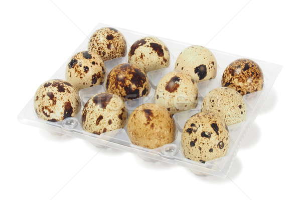 Quail eggs Stock photo © ajt