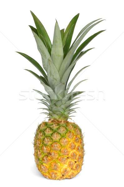 Pineapple Stock photo © ajt