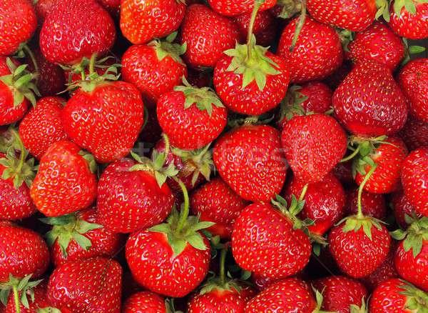 świeże truskawek zestaw puszka używany żywności Zdjęcia stock © ajt