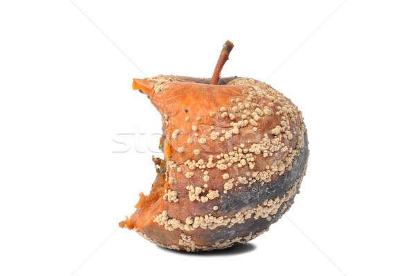 Rohadt alma makró csúnya izolált fehér Stock fotó © ajt