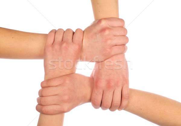 Kezek négy izolált fehér csapat Stock fotó © ajt