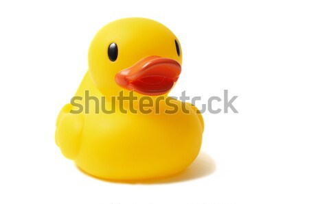 Rubber Duck Stock photo © ajt