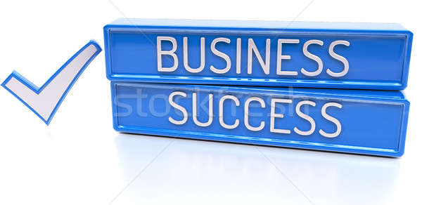 Business Success - 3d banner, isolated on white background Stock photo © akaprinay