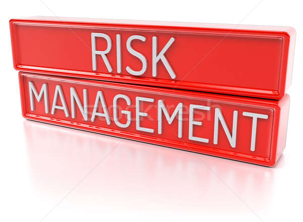 Risk Management - Isolated 3D Render Stock photo © akaprinay