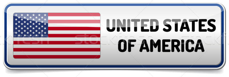 USA flag button Stock photo © akaprinay