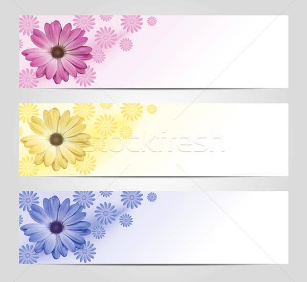 Bloem banner ingesteld roze Geel Blauw Stockfoto © akaprinay