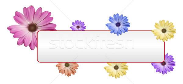 Fiore banner rosa giallo fiore blu bianco Foto d'archivio © akaprinay