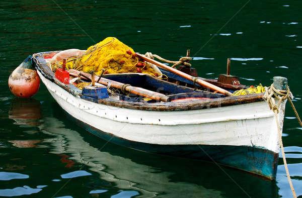 Colorido quadro completo pescaria Foto stock © akarelias