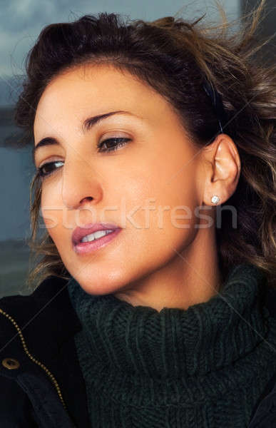 Wyrafinowany młoda kobieta portret piękna przypadkowy zimą Zdjęcia stock © akarelias