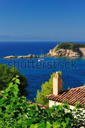 Grego aldeia telhados espetacular ver verde Foto stock © akarelias