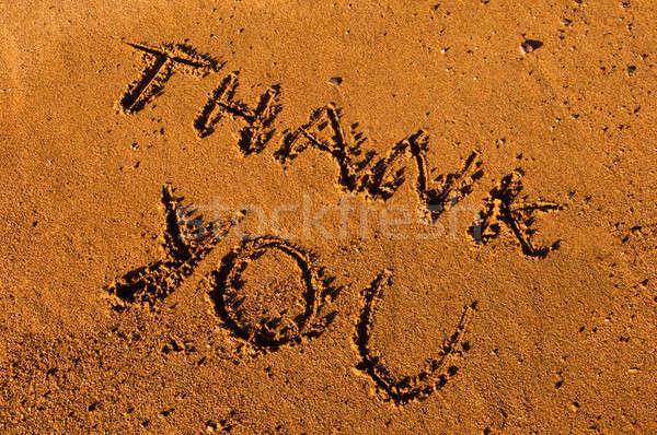Dziękuję wiadomość piasku obraz mokro piśmie Zdjęcia stock © akarelias