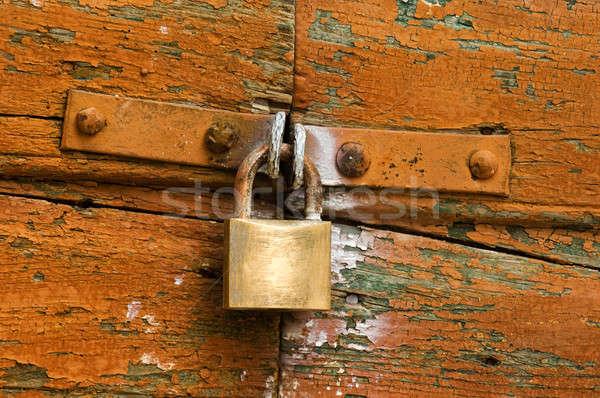Segurança imagem cadeado porta Foto stock © akarelias