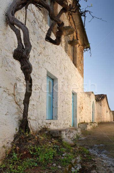 Greek village Stock photo © akarelias