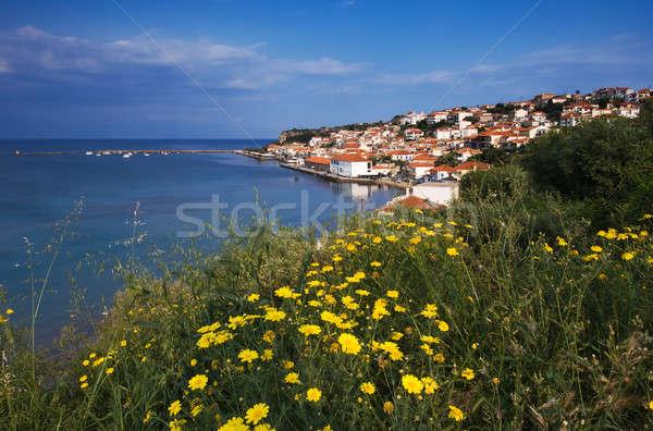 Cidade Grécia quadro amarelo margaridas Foto stock © akarelias