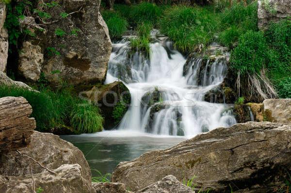 Cachoeira imagem pequeno árvores verde rio Foto stock © akarelias