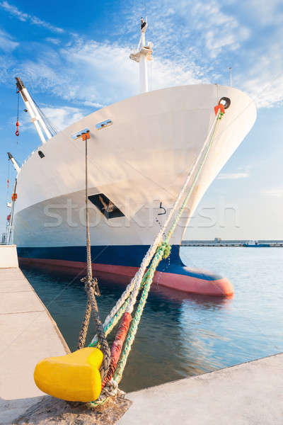 Docked dry cargo ship with bulbous bow Stock photo © akarelias