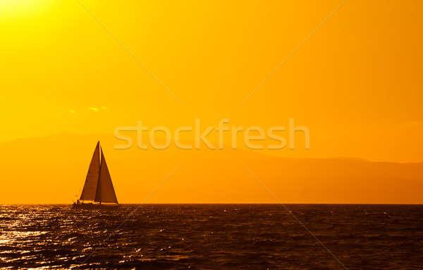 Sailing Stock photo © akarelias