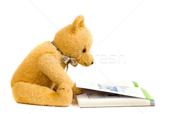 Teddy bear reading a book Stock photo © akarelias